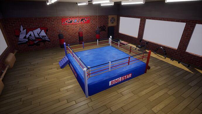 boxe sport room interior